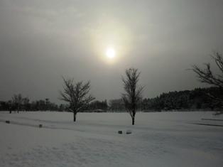 青森県美2.JPG